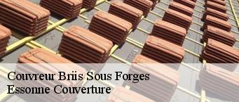 Couvreur  briis-sous-forges-91640