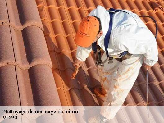 nettoyage et hydrofuge de toit guillerval t l. Black Bedroom Furniture Sets. Home Design Ideas